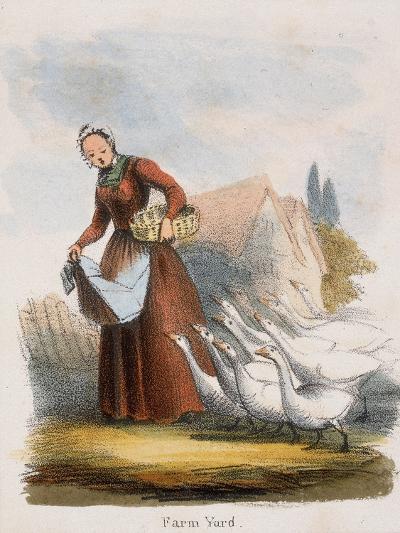 Farm Yard, C1845-Benjamin Waterhouse Hawkins-Giclee Print