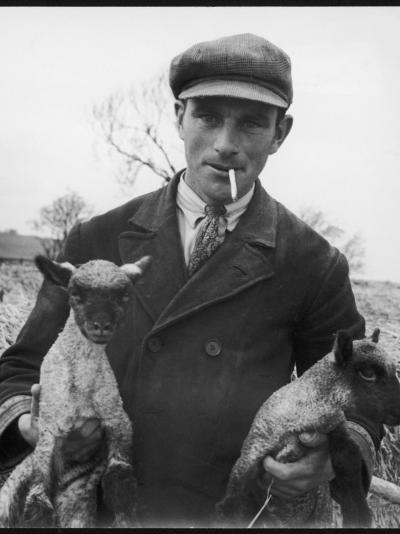 Farmer Holding His New Born Lambs in the Cotswolds-Henry Grant-Photographic Print