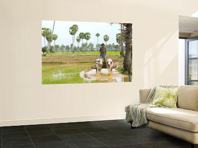 Farmer in Rice Fields North of Phnom Penh-Austin Bush-Wall Mural