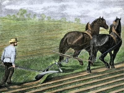 Farmer Plowing Sod with a Team of Horses, c.1800--Giclee Print