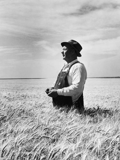 Farmer Posing in His Wheat Field-Ed Clark-Photographic Print