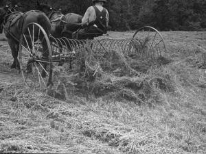 Farmer Working in Field