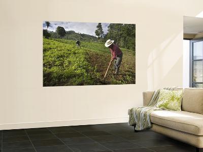 Farmers Clearing Shrub from Corn Fields Near Sabalpop Village-Diego Lezama-Wall Mural