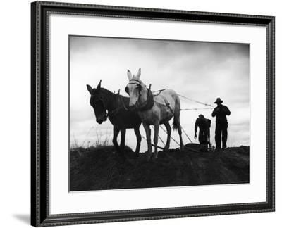 Farmers Preparing the Ground For Spring Planting-Carl Mydans-Framed Photographic Print
