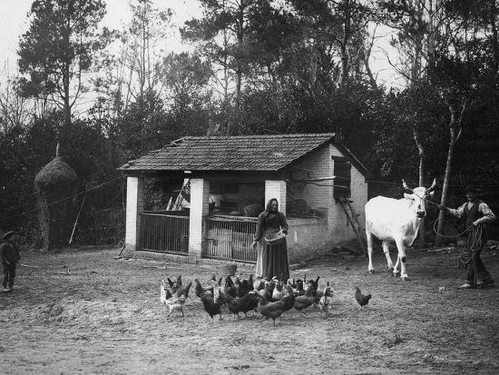Farmers with a Cow and Hens-Nicola Biondi-Photographic Print
