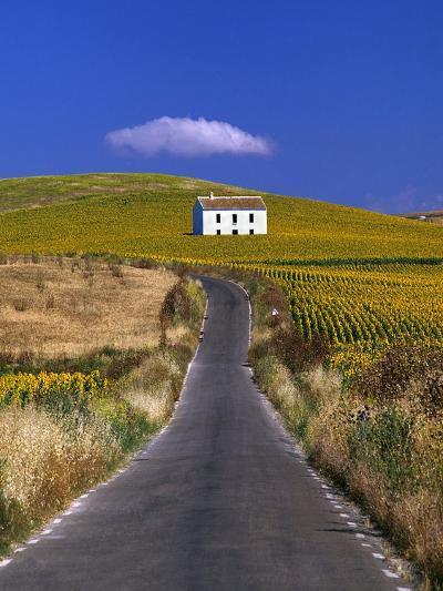 Farmhouse by Country Road-Jos? Fuste Raga-Photographic Print