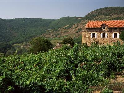 Farmhouse Near Millau, Aveyron, Midi Pyrenees, France-Michael Busselle-Photographic Print