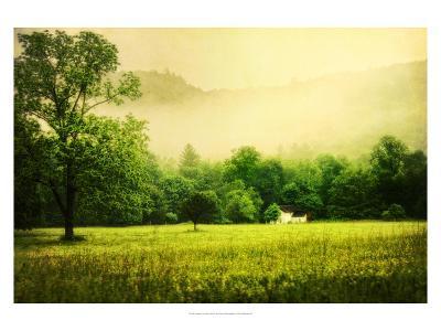 Farmhouse on Foggy Morn'-Danny Head-Art Print