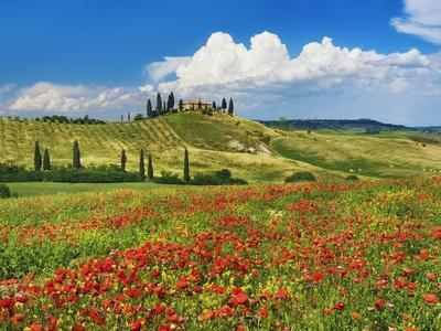 Farmhouse with Cypresses and Poppies-Frank Krahmer-Photographic Print