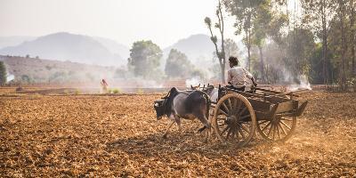 Farming Between Inle Lake and Kalaw, Shan State, Myanmar (Burma), Asia-Matthew Williams-Ellis-Photographic Print