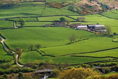 Farmland of North York Moors National Park-Design Pics Inc-Photographic Print
