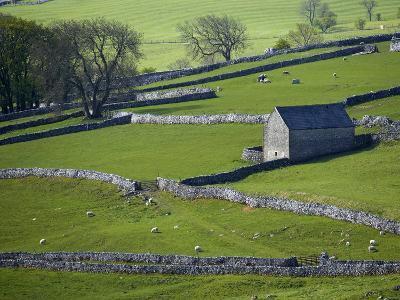 Farmland, Stone Walls and Buildings, Near Malham, Yorkshire Dales, North Yorkshire, England-David Wall-Photographic Print