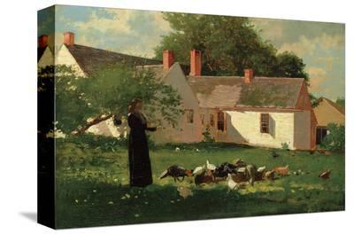 Farmyard Scene, c. 1874-Winslow Homer-Stretched Canvas Print