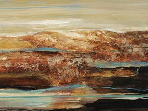 Arroyo I by Farrell Douglass