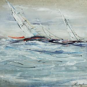 Full Sail II by Farrell Douglass