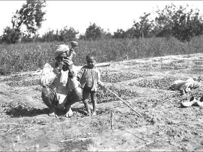 Father and Child in a Field, India--Photographic Print