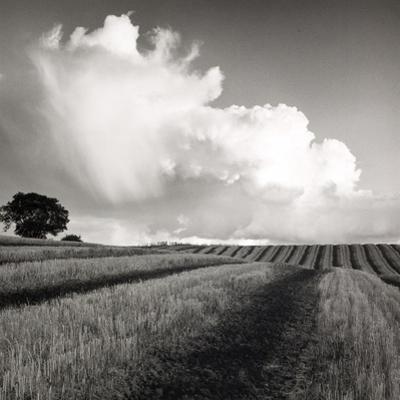 Large White Cloud Near Bilsington, Kent, 1981. by Fay Godwin