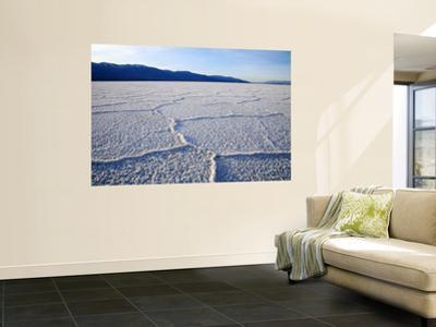 Encrusted Salt Flats at Badwater Basin