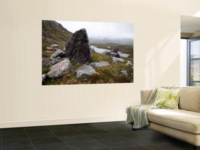 Slopes of Ben Mor Assynt, Sutherland