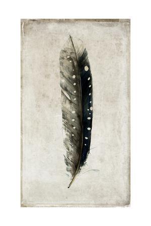 https://imgc.artprintimages.com/img/print/feather-2_u-l-pynjhw0.jpg?artPerspective=n