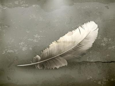Feather, Old-Style-Nataliia Natykach-Art Print
