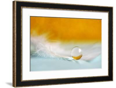 Feather Pearl-Heidi Westum-Framed Photographic Print