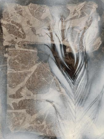 https://imgc.artprintimages.com/img/print/feather-stone-i_u-l-q1bfuri0.jpg?p=0