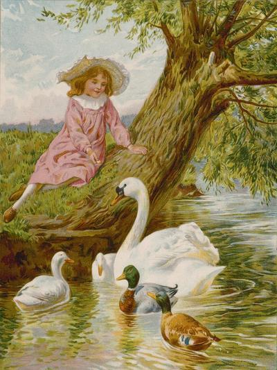 Feathered Pets-English School-Giclee Print