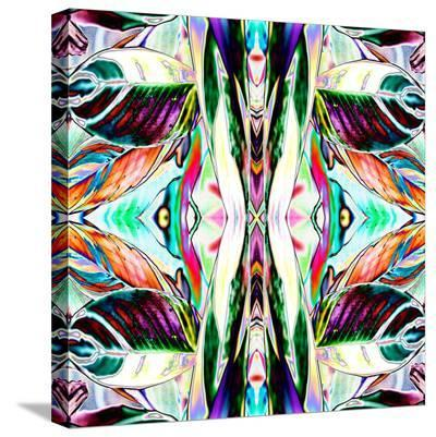 Featherleaf2-Rose Anne Colavito-Stretched Canvas Print