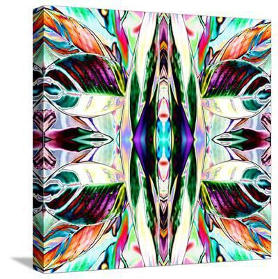 Featherleaf-Rose Anne Colavito-Stretched Canvas Print