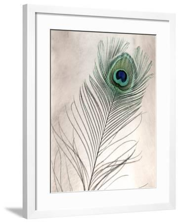 Feathers #11-Alan Blaustein-Framed Photographic Print