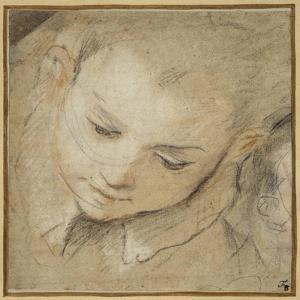 Head of a Boy Looking Down, 1583 by Federico Barocci