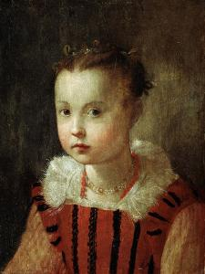 Portrait of a Girl, 16th or Early 17th Century by Federico Barocci