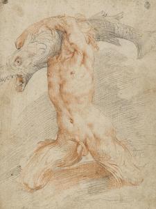 Triton portant un poisson by Federico Barocci