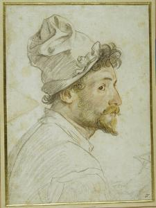 Head and Shoulders of a Bearded Man Wearing a Cap by Federico Zuccaro