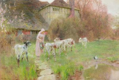 Feeding the Calves-Robert Gustav Meyerheim-Giclee Print