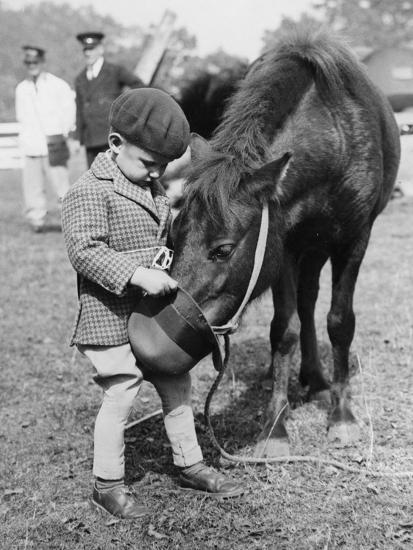 Feeding the Pony-Fox Photos-Photographic Print