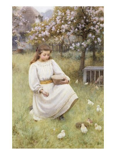 Feeding Time-William Affleck-Giclee Print