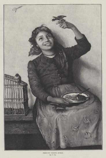 Feeding Young Birds--Giclee Print