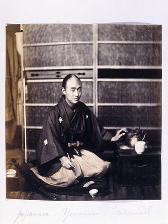A Japanese Yaconin, C.1864-1866