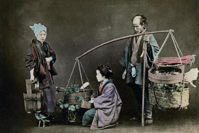 Vegetable Pedlar, Japan, 1882