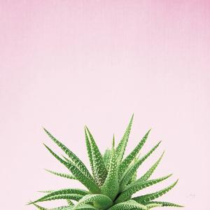 Succulent Simplicity I on Pink by Felicity Bradley
