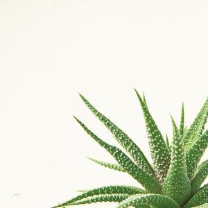 Succulent Simplicity II Neutral by Felicity Bradley