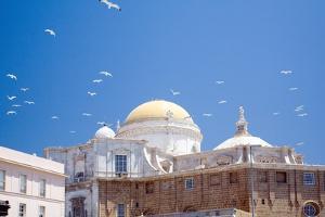 Building in Cadiz in Spain with Seagulls by Felipe Rodriguez