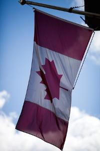 Canadian Flag by Felipe Rodriguez