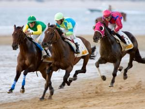 Horse Racing on the Beach, Sanlucar De Barrameda, Spain by Felipe Rodriguez