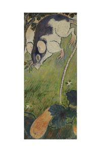 The Rat by Felix Pissarro