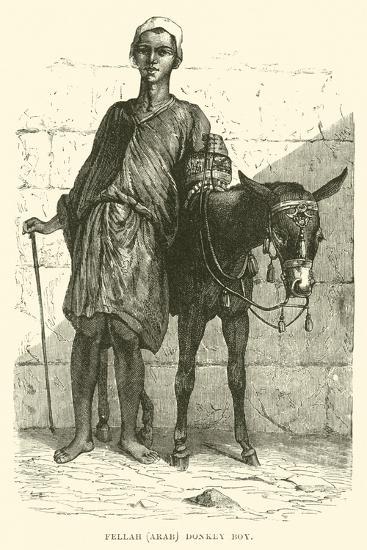 Fellah, Arab; Donkey Boy--Giclee Print