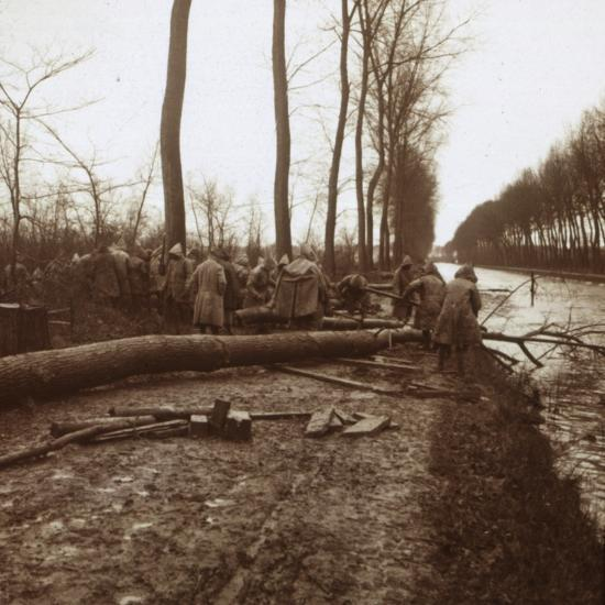 Felling trees, Noyon, northern France, c1914-c1918-Unknown-Photographic Print