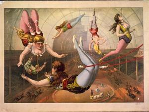 Female Acrobats on Trapezes at Circus, C. 1890